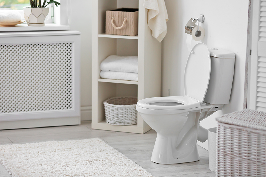 4 Common Reasons Your Toilet Isn't Flushing Properly